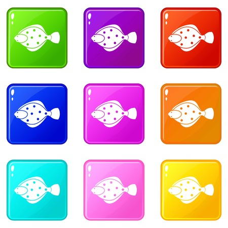 Flounder fish icons of 9 color set isolated vector illustration Illustration