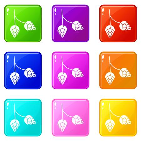 ferment: Branch of hops icons of 9 color set isolated vector illustration