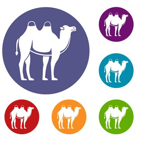 Camel icons set in flat circle red, blue and green color for web