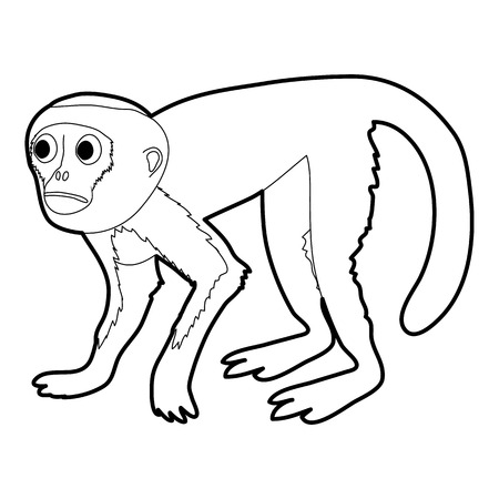 Capuchin Monkey Icon Outline