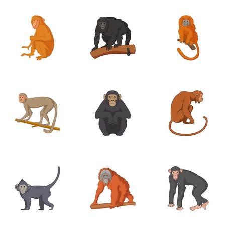 gorila: Species of chimpanzee icons set. Cartoon set of 9 species of chimpanzee vector icons for web isolated on white background