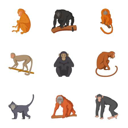Species of chimpanzee icons set. Cartoon set of 9 species of chimpanzee vector icons for web isolated on white background