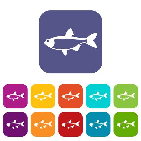 scardinius: Rudd fish icons set vector illustration in flat style in colors red, blue, green, and other