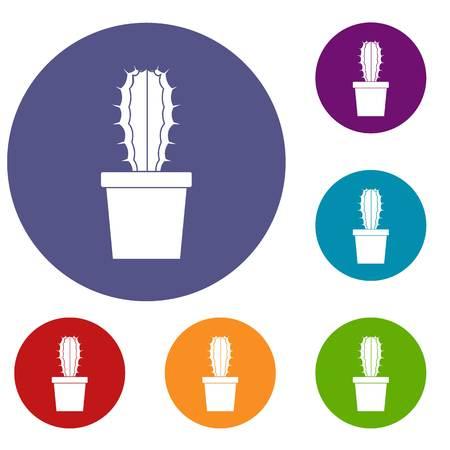 Cactaceae cactus icons set