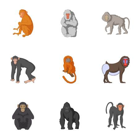 Types of orangutans icons set, cartoon style Illustration
