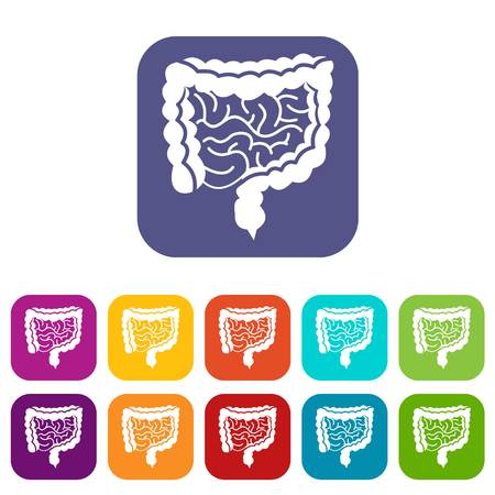 alimentary: Intestines icons set vector illustration in flat style in colors red, blue, green, and other