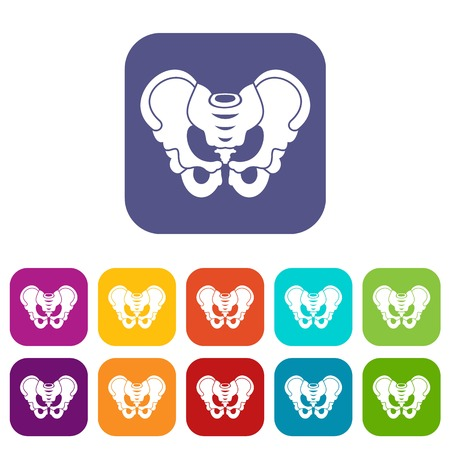 Pelvis icons set vector illustration in flat style in colors red, blue, green, and other Çizim
