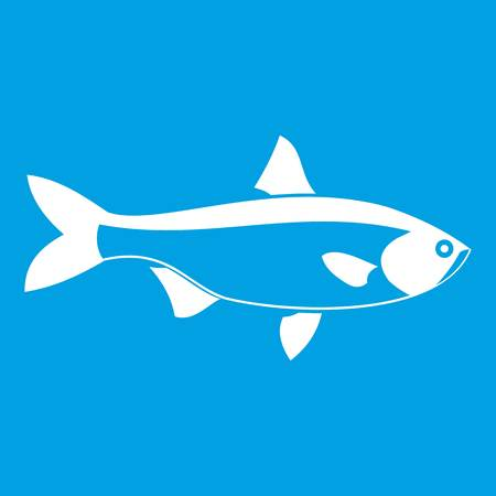 oceanic: Fish icon white isolated on blue background vector illustration