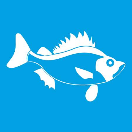 tang: Fish icon white isolated on blue background vector illustration