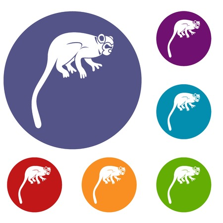 Marmoset monkey icons set in flat circle red, blue and green color for web Illustration