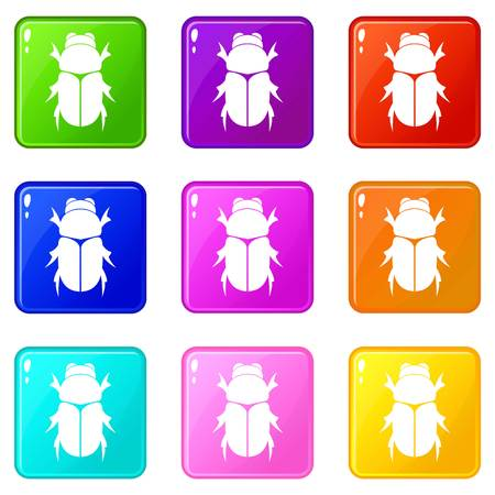 Chafer beetle set 9