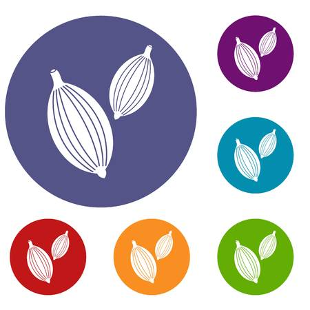 Cardamom pods icons set in flat circle red, blue and green color for web