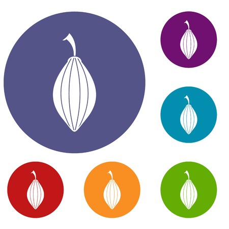 grain: Black cardamom pod icons set in flat circle red, blue and green color for web
