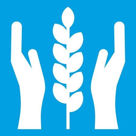 Hands and ear of wheat icon Illustration