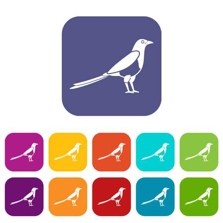 Bird magpie icons set vector illustration in flat style in colors red, blue, green, and other