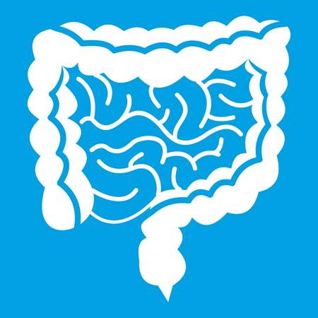 duodenum: Intestines icon white Illustration