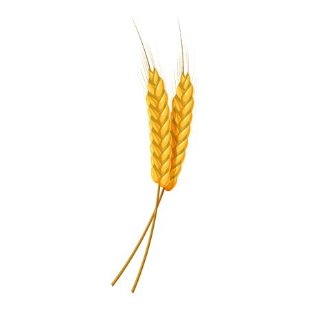 Two wheat ears icon. Cartoon illustration of wheat ears vector icon for web design