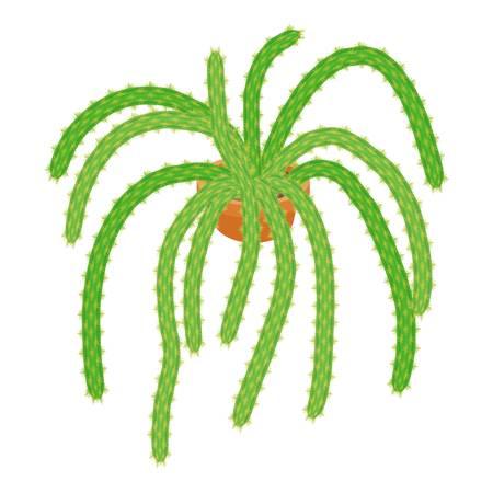 flowerpots: Green cactus icon. cartoon illustration of green cactus vector icon for web Illustration