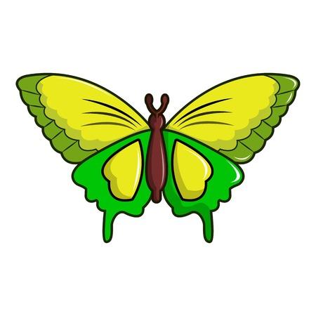 Goliath birdwing butterfly icon, cartoon style Illustration