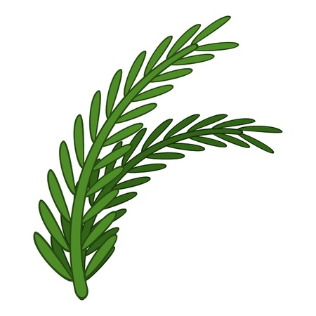 Fresh rosemary sprigs icon, cartoon style Illustration