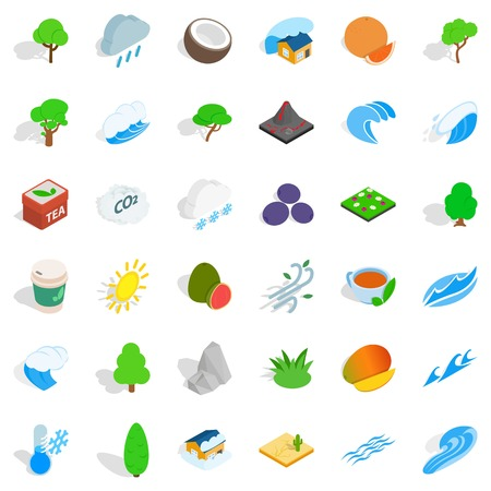 Big tree icons set, isometric style