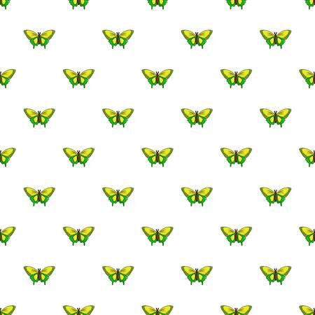Goliath birdwing butterfly pattern in cartoon style. Seamless pattern vector illustration
