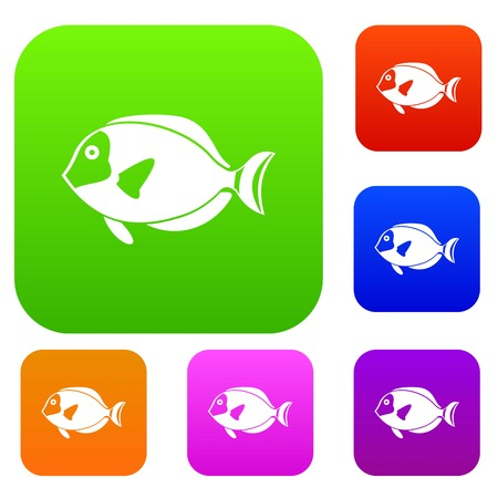 paracanthurus: Surgeon fish set icon in different colors isolated vector illustration. Premium collection