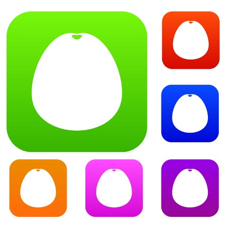 Pomelo set icon in different colors isolated vector illustration. Premium collection Illustration