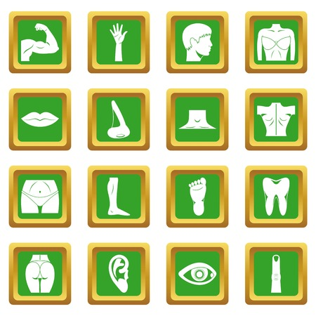 Body parts icons set in green color isolated  illustration for web and any design