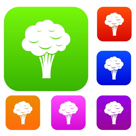 Broccoli set icon in different colors isolated vector illustration. Premium collection
