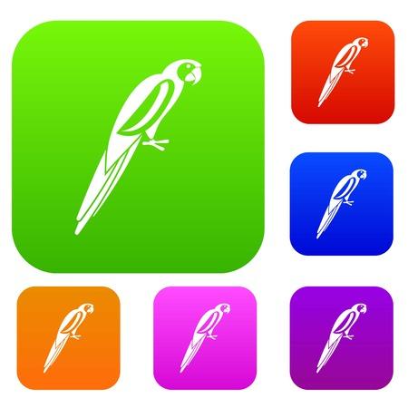 periquito: Parrot icono conjunto en diferentes colores ilustración vectorial aislado. Colección Premium