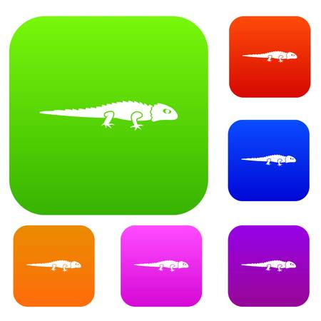Iguana set icon in different colors isolated vector illustration. Premium collection Illustration