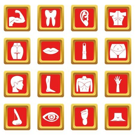 Body parts icons set red Çizim