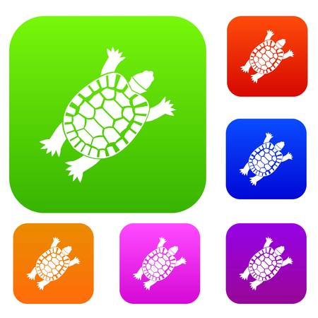 Turtle set icon in different colors isolated vector illustration. Premium collection