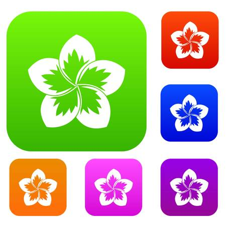 Frangipani flower set icon in different colors isolated vector illustration. Premium collection Illustration