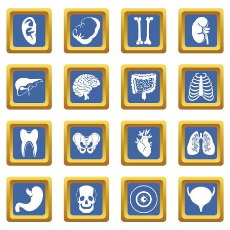 human liver: Human organs icons set in blue color isolated vector illustration for web and any design