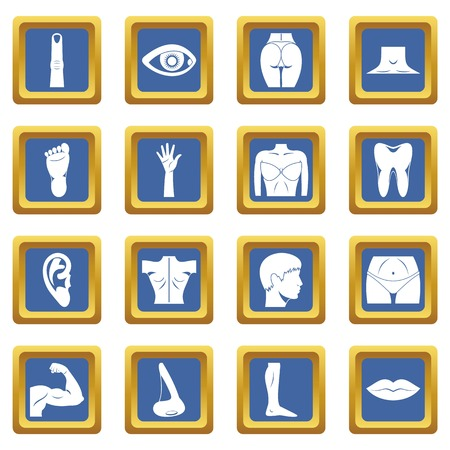 Body parts icons set in blue color isolated vector illustration for web and any design