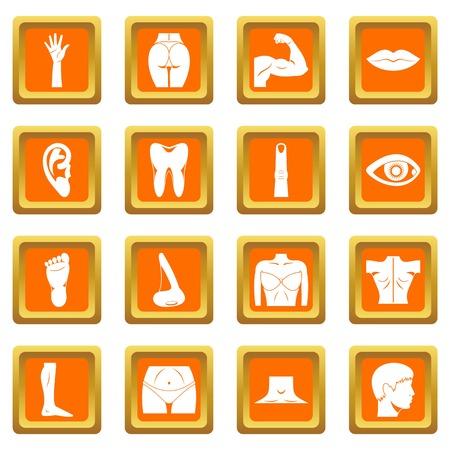 Body parts icons set orange. Illusztráció