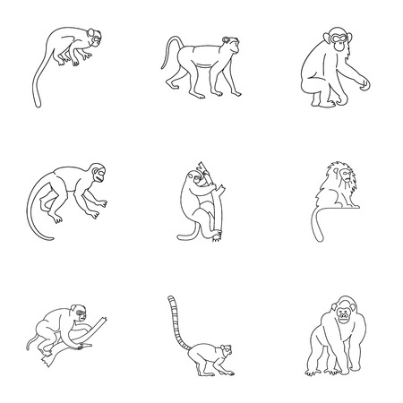 Monkey icon set, outline style