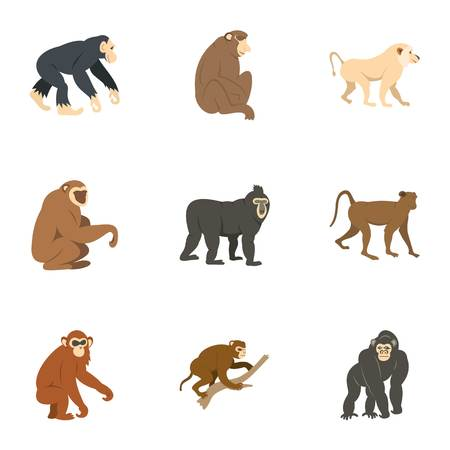 Species of monkey icon set, flat style Illustration
