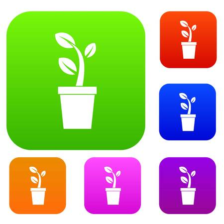 Sprout in pot in simple style isolated on white background vector illustration