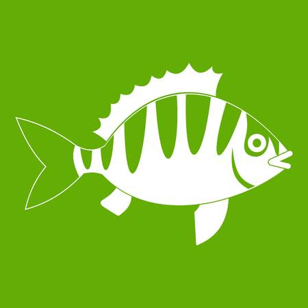 perca: Perch icon white isolated on green background. Vector illustration