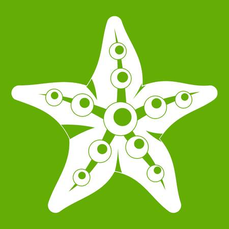 Starfish icon white isolated on green background. Vector illustration
