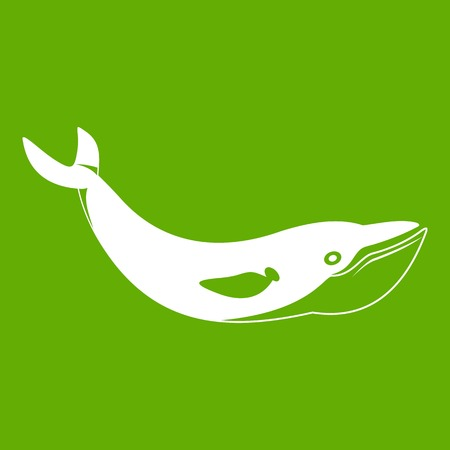 Whale icon white isolated on green background. Vector illustration Illustration