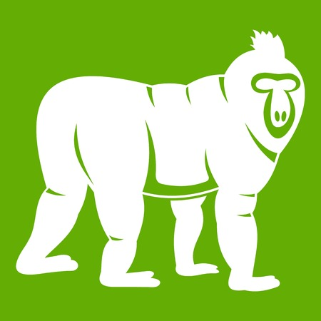 Mandrill monkey icon white isolated on green background. Vector illustration