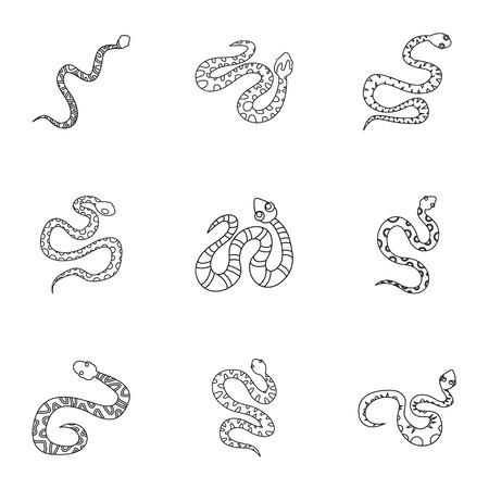 Conjunto de iconos de serpiente salvaje. Conjunto de contorno de 9 iconos de vector de serpiente salvaje para web aislado sobre fondo blanco