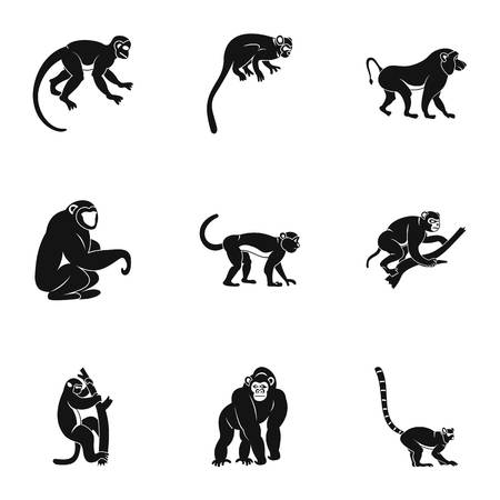 Species of monkey icon set, simple style Illustration