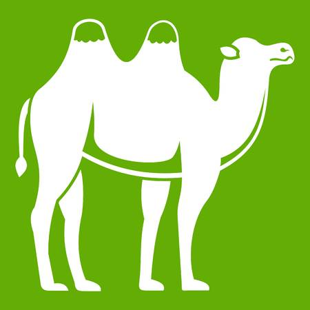 Camel icon white isolated on green background. Vector illustration