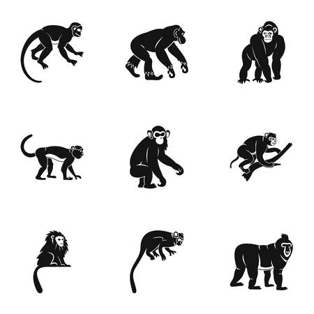 Tropical monkey icon set, simple style Illustration