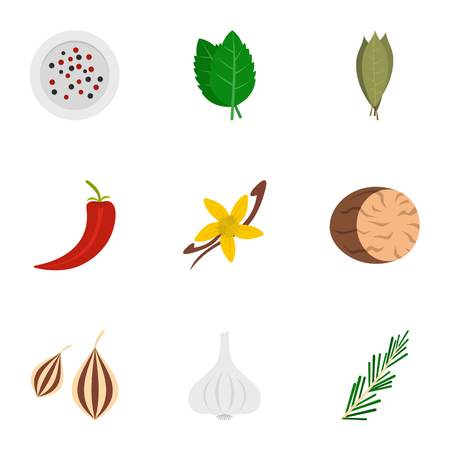 cloves: Eco condiment icon set. Flat set of 9 eco condiment vector icons for web isolated on white background Illustration